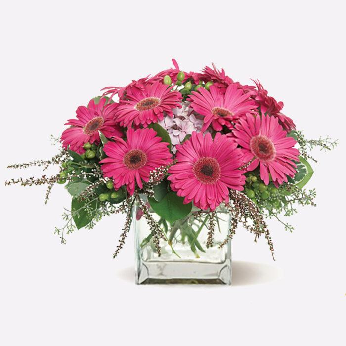 Gerbera Glory Floral Arrangement